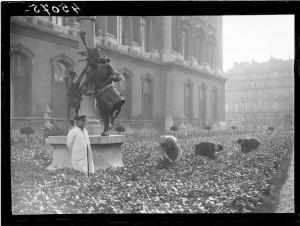 Ravitaillement de Paris, été 1943. Coll. MRN –  fonds dit du Matin.